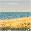 Sommerpause vom 08.07.13 bis 26.07.13